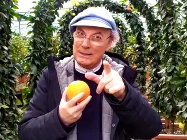luca-sardella-arancia-bellabionda